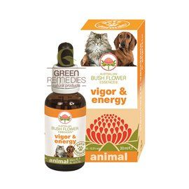 VIGOR & ENERGY 30ML