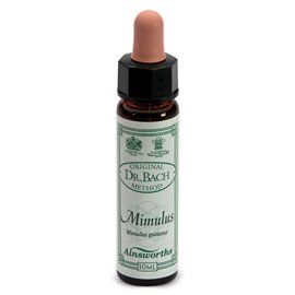 MIMULUS n. 20 F. Remedy 10ml